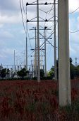 powerline towers follow in single file beside a local road poster