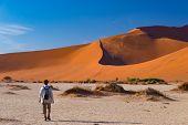 Tourist Walking On The Scenic Dunes Of Sossusvlei, Namib Desert, Namib Naukluft National Park, Namib poster