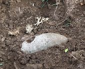 picture of bombshell  - an unexploded bomb from World War II found in the ground - JPG