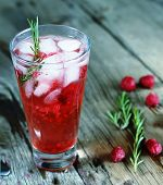 Alcohol Cocktail Or Fruity Cocktail Drink Decorated  Rosemary poster