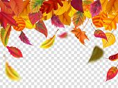 Autumn Leaves Fall. Falling Blurred Leaf, Autumnal Foliage Fall And Wind Rises Yellow Leaves. Leaf D poster