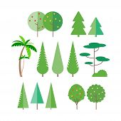 Set Of Trees In Flat Style - Palm Tree, Spruce, Fir-tree, Pine. Fruit Trees- Apple, Pear. Vector Ill poster