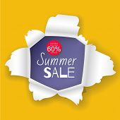 Summer Sale Banner In The Realistic Torn Paper Hole Vector Illustration Design. Yellow Background An poster
