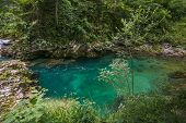 The Vintgar Gorge Or Bled Gorge Is A 1.6-kilometer (0.99 Mi) Gorge In Northwestern Slovenia In The M poster
