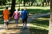 Back View Of Retired Multicultural Pensioners In Sportswear Walking In Walkway In Park poster