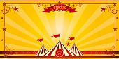 Orange circus invitation. An invitation card for your circus company.