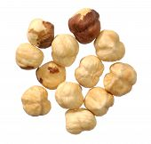 picture of fibrin  - Hazel nuts collection isolated on a white background - JPG
