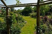 stock photo of pergola  - Wooden pergola gazebo in a beautiful blooming garden full of flowers and green plants - JPG