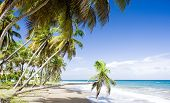 picture of greater antilles  - Sauteurs Bay - JPG