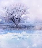 image of frozen  - winter magic landscape  - JPG