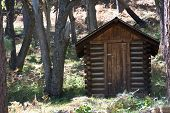 stock photo of outhouse  - An old outhouse standing in the woods - JPG