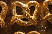foto of pretzels  - Homemade Soft Pretzels with Salt Ready to Eat - JPG