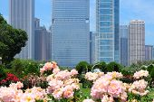 stock photo of illinois  - Chicago Illinois in the United States. City skyline with Grant Park flowers.