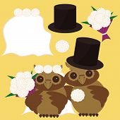 nice owls bridegroom and bride