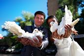 Newlyweds With Pigeons In His Hands