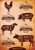 foto of veal meat  - vector diagram cut carcasses of chicken pig cow lamb - JPG