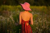 picture of beatitudes  - Elegant beautiful woman in a hat among wildflowers at sunset - JPG