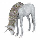 image of unicorn  - 3D digital render of a beautiful white fantasy unicorn isolated on white background - JPG
