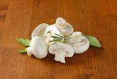 image of mushroom  - heap of fresh mushrooms with herbs - JPG