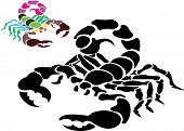 image of scorpion  - Scorpion Tattoo Vector on a Isolated Background - JPG