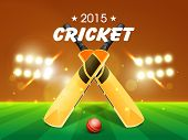 picture of cricket ball  - Shiny bats with red ball for Cricket 2015 on stadium lights background - JPG