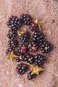 foto of blackberries  - fresh blackberries on of the field stone - JPG