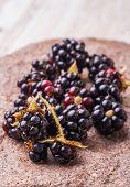 image of blackberries  - fresh blackberries on of the field stone. studio shot ** Note: Shallow depth of field - JPG