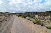 stock photo of volcanic  - Volcanic Rock Basaltic Formation in Canary Islands - JPG