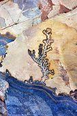 picture of petra jordan  - Fossilized plant on sandstone gorge formation Rose City Siq Petra Jordan - JPG