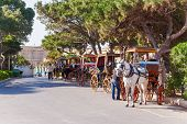 picture of carriage horse  - Row of horse with carriages in Mdina old capital of Malta - JPG