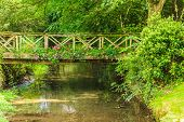 picture of english cottage garden  - Old small bridge over river stream creek in green garden - JPG