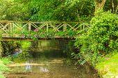 picture of old bridge  - Old small bridge over river stream creek in green garden - JPG