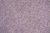 image of stippling  - Full frame take of a coarse stucco surface - JPG