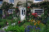 stock photo of english cottage garden  - A postcard view of English cottage garden - JPG