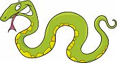 pic of anaconda  - cartoon vector illustration of funny green snake - JPG