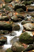 stock photo of gatlinburg  - Flowing Water in Smoky Mountain Stream near Gatlinburg Tennessee - JPG