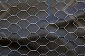 stock photo of chicken-wire  - Section of Chicken wire over black roofing paper - JPG