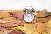 Vintage Black Alarm Clock On Autumn Leaves. Time Change Abstract Photo. Daylight Saving Time. poster
