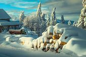 Winter And Christmas Landscape With Snow Covered Scenery. Winter Rural Landscape With Snow Covered O poster
