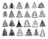 Sketch Fir Tree. Christmas Trees Scribble Pen Drawn Holiday Decoration. Vintage Doodle Graphic Vecto poster