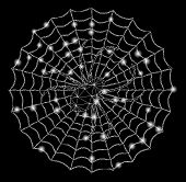 Flare Mesh Spider Net With Sparkle Effect. Abstract Illuminated Model Of Spider Net Icon. Shiny Wire poster