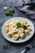 Dumplings Stuffed With Meat, Ravioli, Dumplings. Dumplings With Stuffing. Russian Cuisine. Copy Spac poster