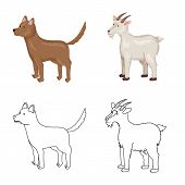 Vector Illustration Of Breeding And Kitchen Icon. Set Of Breeding And Organic Stock Symbol For Web. poster