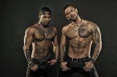 Men Tattooed Muscular Body. Fashion Models Muscular Chest. Sportsmen Muscular Belly Posing. Sport An poster