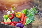 Organic Vegetables On Wood ,fresh Organic Vegetables.organic Vegetables And Fruits, Food Background. poster