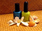 Nail Polish And Seashells poster