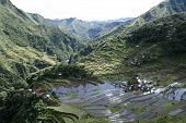 stock photo of luzon  - ancient rice terraces of batad north luzon in the Philippines - JPG