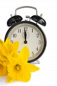 stock photo of daffodils  - Vintage alarm clock with yellow daffodil flowers on white - JPG