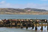 foto of falklands  - Port Stanley harbor Falkland Islands mountains background - JPG