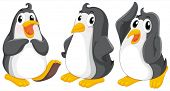 Illustration of the three cute penguins on a white background